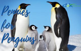Pennies for Penguins | DEK Leadership