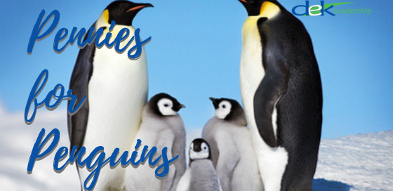 Pennies for Penguins | DEK Leadership